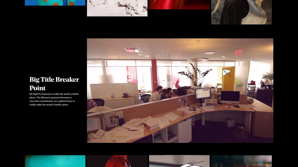 Blossom Srl website screenshot 2