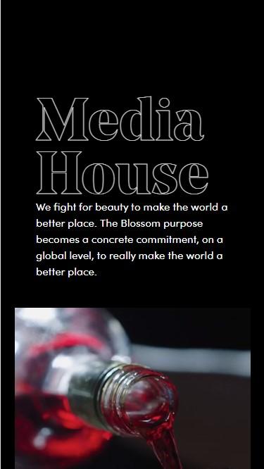 Blossom Srl website screenshot 4